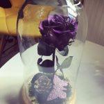 cupola-purple