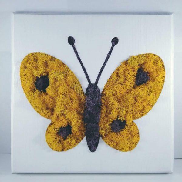 decoratiunebutterfly