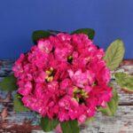 Livrare-flori-targoviste-aranjamente-flori-buchete-flori (4)