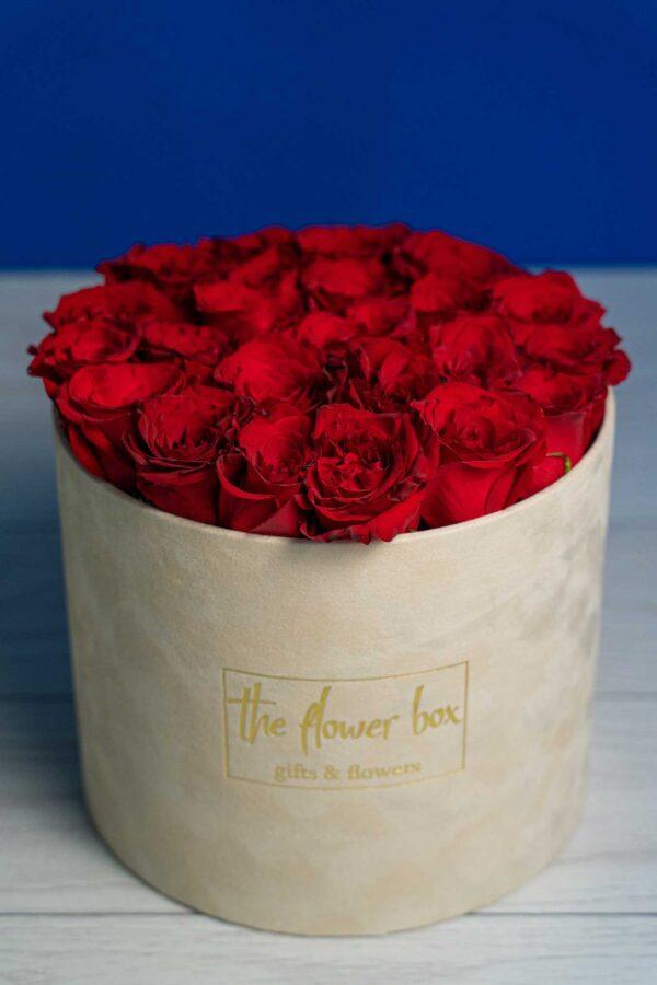 Cutie Deluxe cu 21 Trandafiri rosii