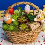 florarie-aranjamente-buchete-plante-targoviste-53