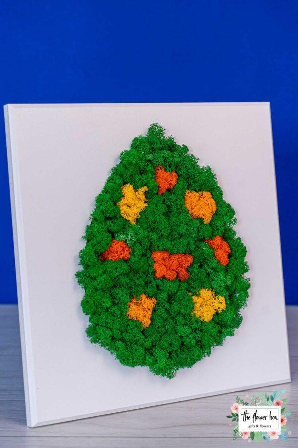 florarie-aranjamente-buchete-plante-targoviste-59