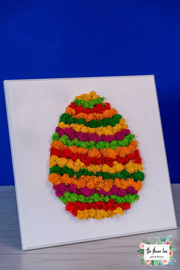 florarie-aranjamente-buchete-plante-targoviste-62